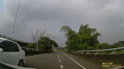 台南市,白河,爆料公社,三寶,女駕駛,逆向