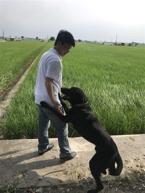 林佳新,立委,台中,韓國瑜,菜農,韓家軍