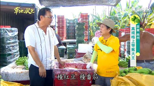 草地狀元-香蕉(圖/草地狀元YOUTUBE)