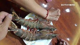 手臂大草蝦1200