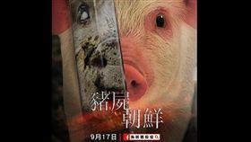 海巡署長室17日在臉書po文,呼籲赴韓旅遊的民眾注意豬瘟疫情,嚴禁攜帶豬肉返台。(圖/翻攝自「海巡署長室 coast guard」臉書)