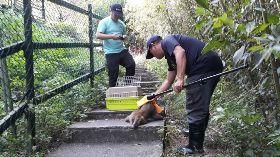 賽德克巴萊拍攝點遊客遭襲  警逮獼猴