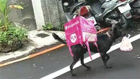 小黑狗,網友P圖。 圖片來源/爆廢公社二館