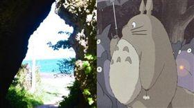 日本,青森,洞穴,岩穴,龍貓。(合成圖/翻攝自朝日新聞、推特)
