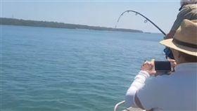 鱷魚,釣魚,出海,垂釣,澳洲,昆士蘭,收餌,魚竿,魚,海釣, 圖/翻攝自YouTube