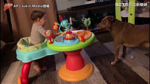 小孩與狗一起兜圈玩耍 網友:最療癒的畫面