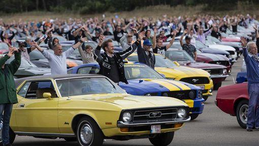 ▲Ford Mustang比利時車聚(圖/翻攝網路)