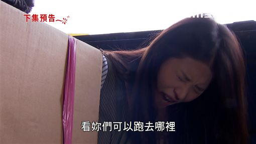 李燕,炮仔聲,王宇婕