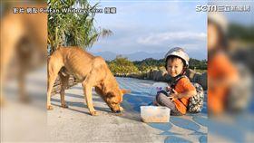 路上遇受傷浪浪 3歲童暖坐地餵食