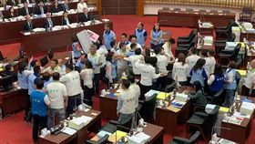 高雄市議會,打架,鄭孟洳,辭職