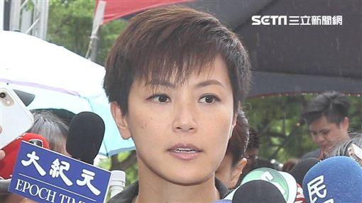 929台港大遊行,香港歌手何韻詩遭潑漆。(圖/記者邱榮吉攝影)