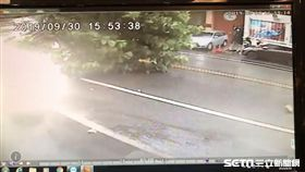 米塔,颱風,路樹,變電箱,花蓮