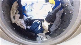 洗衣機,老鼠,洗衣服,(PTT