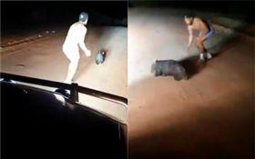 澳洲警察拿石頭砸死袋熊(圖/翻攝自WildAware臉書粉絲專頁)