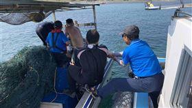 澎湖東吉嶼,薰衣草森林,珊瑚礁,漁網覆蓋,環境(圖/海管處提供)中央社
