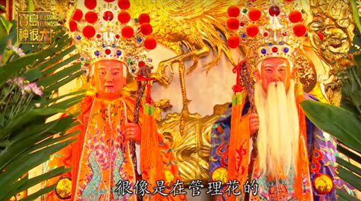 寶島神很大第98集完整版 台灣最威的男女醫「神」長命百歲又能增產報國(節目截圖)