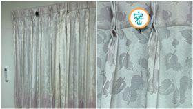 蝙蝠,運氣,房間,窗簾,動物(圖/翻攝自PTT)