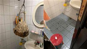 想洗澡打開浴室…驚見「籃球蜂窩」!他嚇瘋:爸媽要當擺飾(圖/翻攝自爆廢公社)