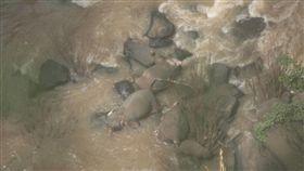 泰國,大象,瀑布,摔死(圖/翻攝自推特)