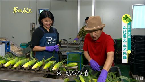 草地狀元-玉米(圖/草地狀元Youtube)