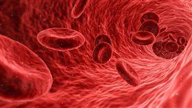 紅血球,血管