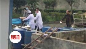 女工跌入汙水池…老公同事5人下去救「6人全身亡」 圖翻攝自微博