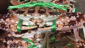 秋蟹,花蟹,價格,龜吼漁港,餐廳,業者,連假