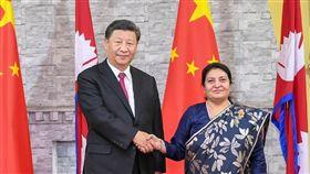習近平10月12日會見尼泊爾總統班達里(圖/翻攝自新華網)