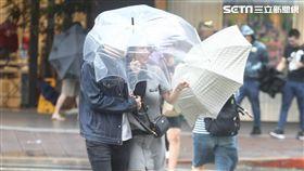 天氣,氣象,下雨,颱風,降雨,雨天,停班,停課,上班,上課,冒雨,雨傘,撐傘,淋雨,強風,豪雨(示意圖/邱榮吉攝影)