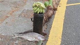 武陵,山路,祭山神,死魚,香蕉(翻攝自爆廢公社公開版)