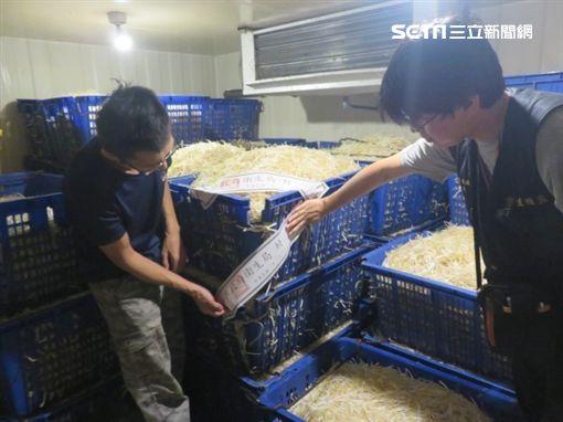 豆芽菜,黑心,保險粉,台北,新北市衛生局提供