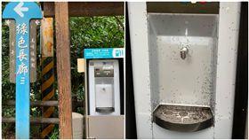 新竹大小事,民眾發現,新竹18尖山飲水機被螞蟻大軍攻佔, 廠商回竟然是取暖。(圖/翻攝自新竹大小事)