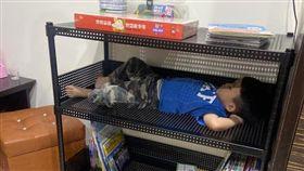 睡覺皇帝大!兒躺「書櫃」裡舒服熟睡。(圖/翻攝自「爆廢公社公開版」臉書)