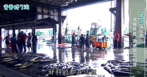 【台東。成功】老饕最愛 魚港限定料理 (節目截圖)
