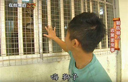 【見義勇為紀念碑】壽山動物園→高雄打狗餅【在台灣的故事】(節目截圖)