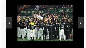 ▲軟銀鷹連續3年奪下日本一頭銜。(圖/截自日本媒體)