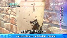 韓黨改風.水1800