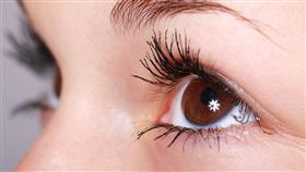 眼睛,睫毛(圖/pixabay)