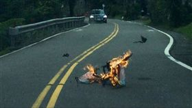 平溪,天燈,馬路,出意外,燃燒,火球,灌頂
