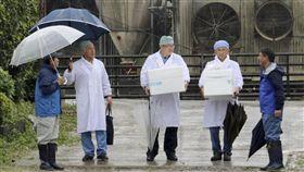 日本目前已有11縣發現非洲豬瘟疫情,農林水產省為避免疫情持續擴散,決定時隔13年,從25日再針對豬隻施打疫苗。(共同社提供)