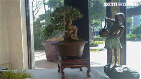 中悅美樹花園。(圖/記者陳韋帆攝影)