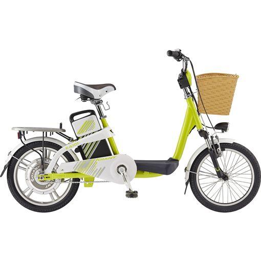 爆怨,安全帽,電動自行車,電動輔助自行車,罰單