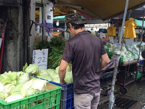高麗菜,台北果菜批發市場,價格便宜,不會崩盤,消費(圖/中央社)