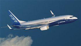 美國,波音公司,波音737,裂縫,停飛(圖/翻攝自波音官網)