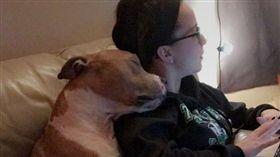 病狗差點安樂…女大生緊急認養 結果發現牠來「抱恩」的 (圖/翻攝自Jamie Holt臉書)