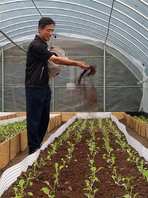 淼同生物科技股份有限公司總經理高志誠(圖)表示,透過咖啡渣調整施肥比例,當土壤孕育很好的時候,很多病蟲害自然就會壓下來、甚至不會發生,不需再使用農藥,他也示範如何以咖啡渣改善土壤。中央社記者張雄風攝 108年11月3日