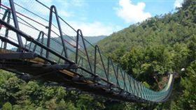 南投,男童,奧萬大,吊橋,墜落(圖/翻攝畫面)