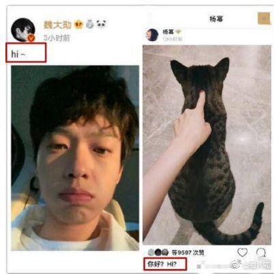 楊冪,魏大勛(圖/翻攝自微博)