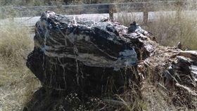 詭異,森林,巫師岩,公園,指標,魔力,消失,出現,不見,標誌,觸法,Prescott National Forest, 圖/翻攝自Prescott National Forest臉書