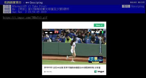 D罩杯,女球僮,12強棒球賽,PTT 圖/翻攝自PTT